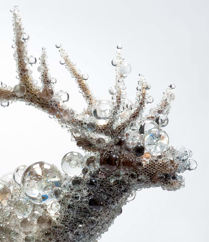 crystal-bead-taxidermy-04